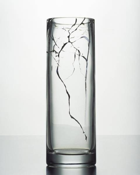 2007 Photograph - A Cracked Vase by Romulo Yanes