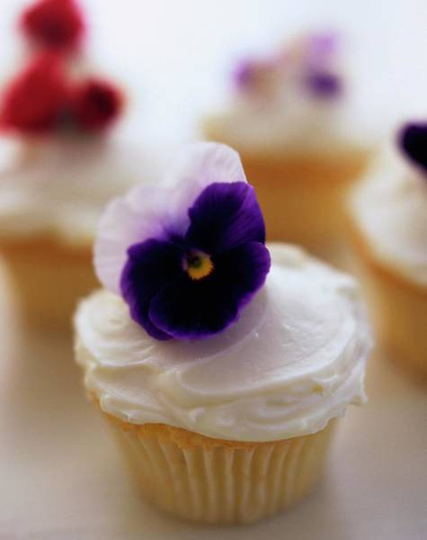 Indulgence Photograph - A Cupcake With A Violet On Top by Romulo Yanes