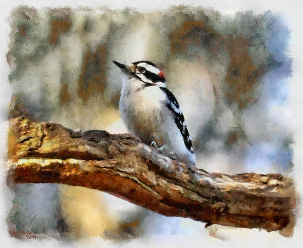 Painting - A Cute Little Woodpecker by Tyler Robbins