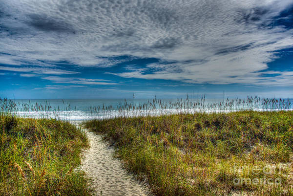 Wall Art - Photograph - A Day At The Beach by Matthew Trudeau