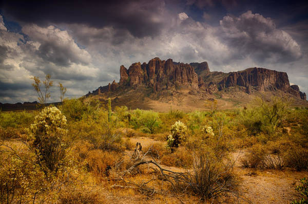 Sonoran Desert Photograph - A Day At The Superstitions  by Saija  Lehtonen