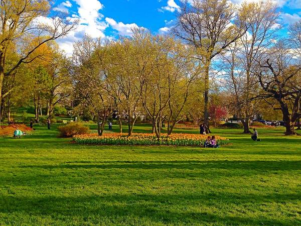 Photograph - A Day In The Park by Chris Montcalmo