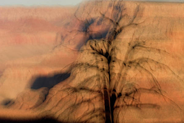 Wall Art - Photograph - A Dead Tree On The Rim Of The Canyon by Phil Schermeister