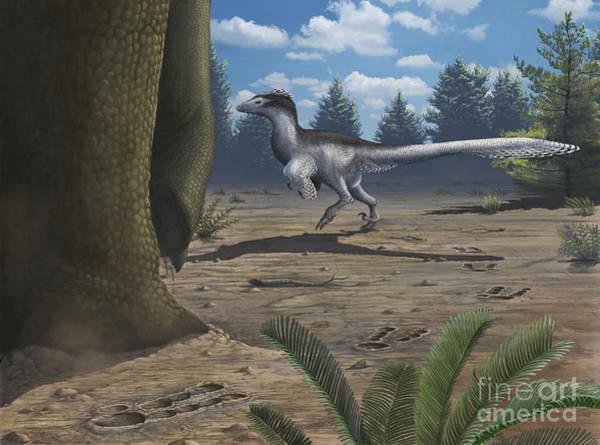 Paw Digital Art - A Deinonychosaur Leaves Tracks by Emily Willoughby