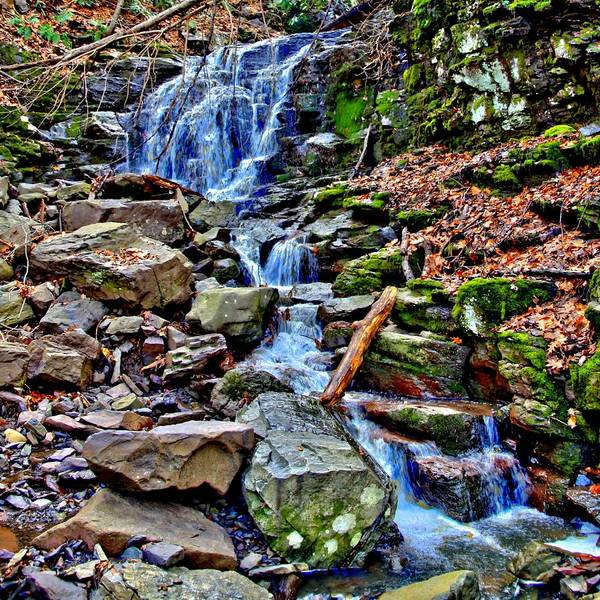 Wall Art - Photograph - A Delaware Tributary by DJ Florek