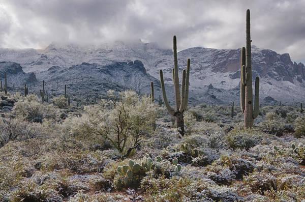 Superstition Mountains Photograph - A Desert Winter Wonderland  by Saija  Lehtonen