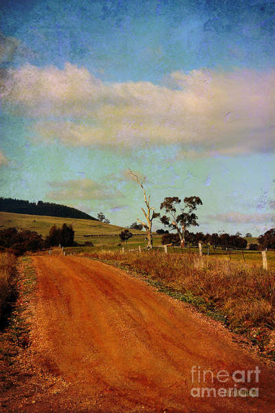 Photograph - A Different Road ... by Chris Armytage