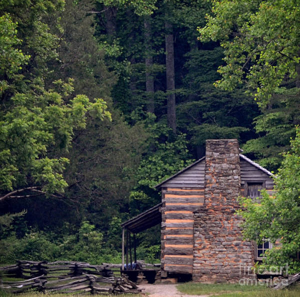 Wall Art - Photograph - A Different View Of A Mountain Cabin by Eva Thomas