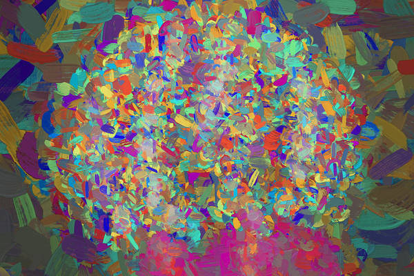 Photograph - A Digitally Painted Mess Of Beauty by David Haskett II