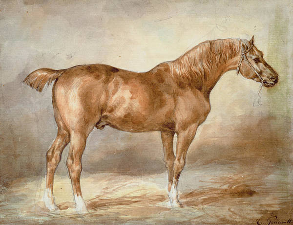 Chestnut Horse Painting - A Docked Chestnut Horse by Theodore Gericault