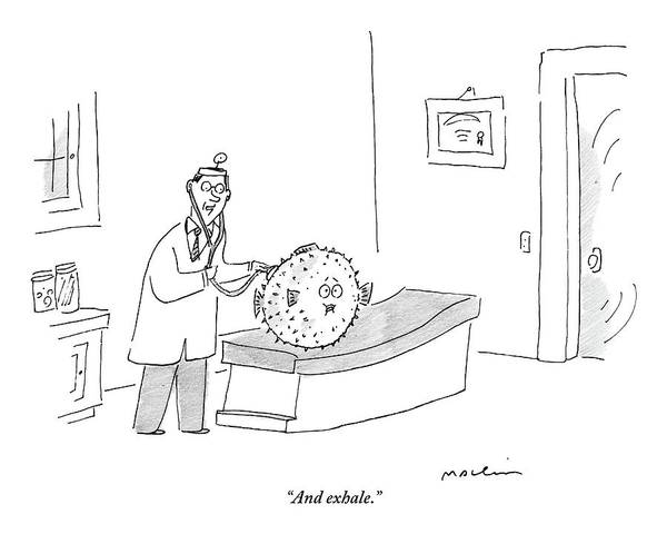 Doctor Drawing - A Doctor Conducts A Check Up On His Blowfish by Michael Maslin