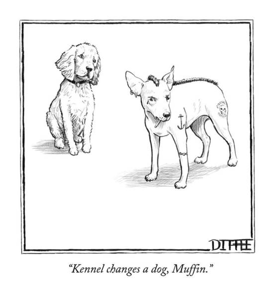 Wall Art - Drawing - Kennel Changes A Dog Muffin by Matthew Diffee
