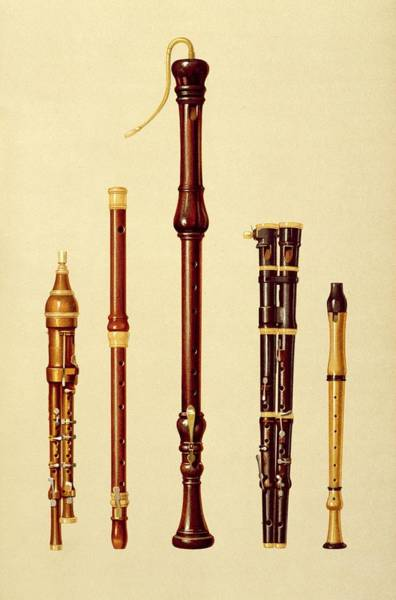 Wind Drawing - A Double Flageolet, A German Flute by Alfred James Hipkins