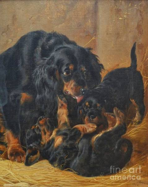 Painting - A Family Of Gordon Setters by Celestial Images