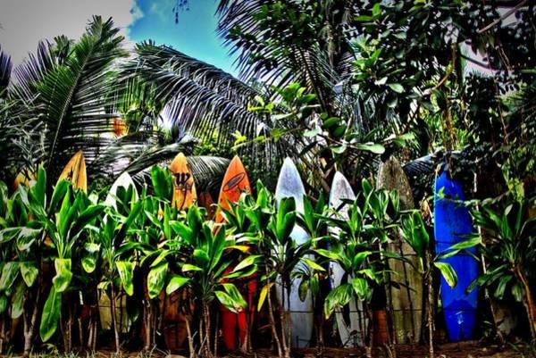 Surfboard Fence Photograph - A Fence In Haiku by DJ Florek