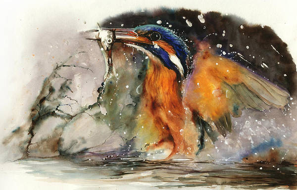 Painting - A Flash Of Brilliance by Peter Williams