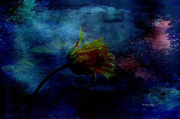 Photograph - A Floral Dream by Randi Grace Nilsberg