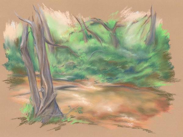 Pastel - A Forest Brook by MM Anderson