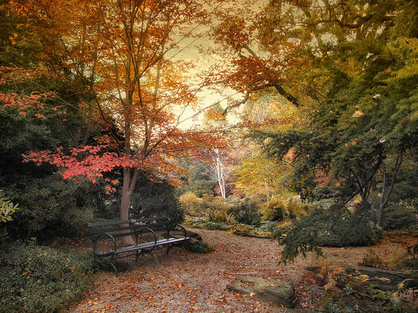 Photograph - A Formal Garden by Jessica Jenney