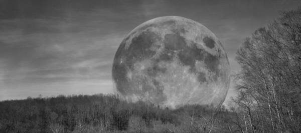 Super Moon Photograph - A Friend At Night by Betsy Knapp