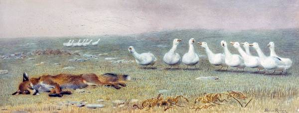 Goose Drawing - A Game Of Fox And Geese, 1868 by Briton Riviere