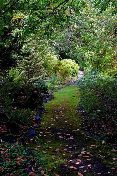 A Garden Path Art Print