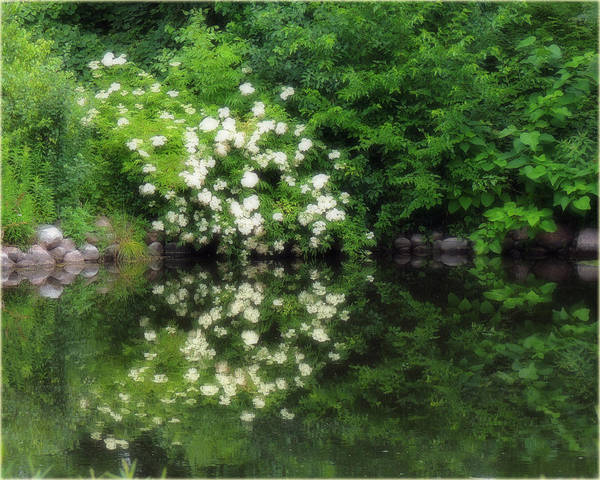 Wall Art - Photograph - A Glimpse Of Paradise by Teresa Schomig