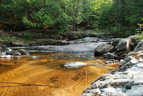 Baraga Photograph - A Golden Pool Of Sand by Janice Adomeit