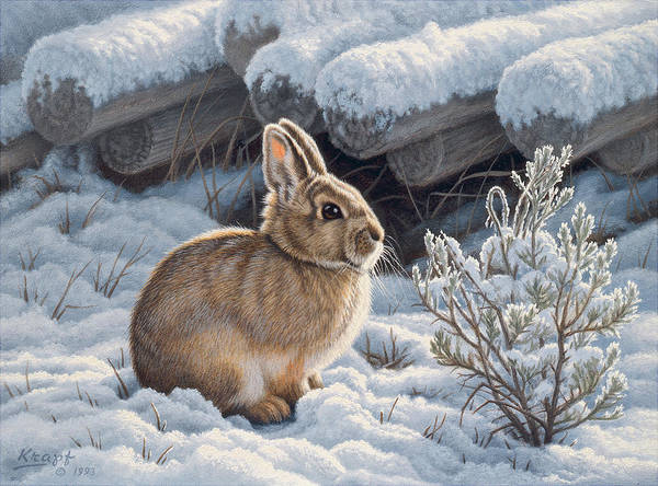 Wall Art - Painting - A Good Place - Bunny by Paul Krapf
