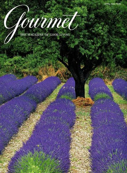 1994 Photograph - A Gourmet Cover Of A Lavender Field by Julian Nieman