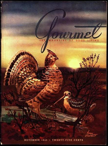 Bird Photograph - A Gourmet Cover Of A Turkey by Henry Stahlhut