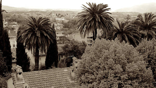 Photograph - A Grasse View  by August Timmermans