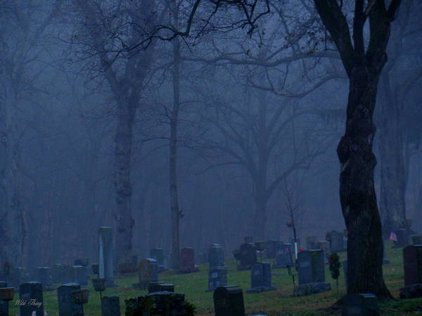 Photograph - A Grave Mist by Wild Thing