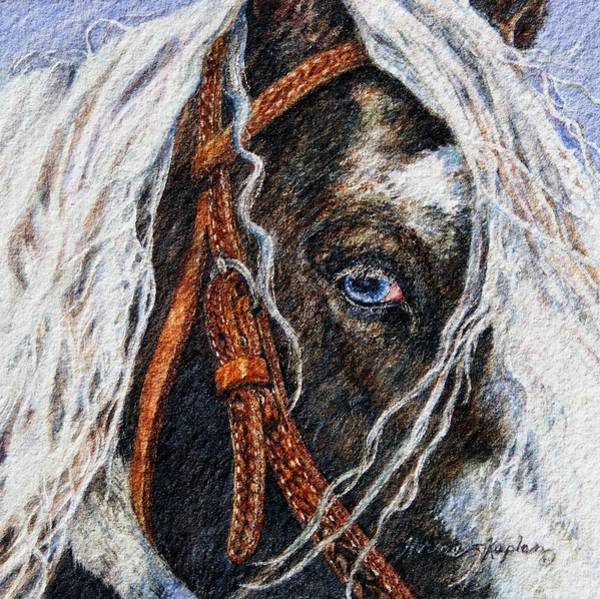 A Gypsy's Blue Eye Art Print