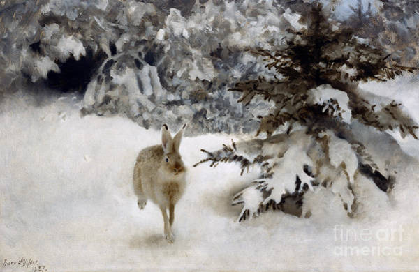 Haring Painting - A Hare In The Snow by Bruno Andreas Liljefors