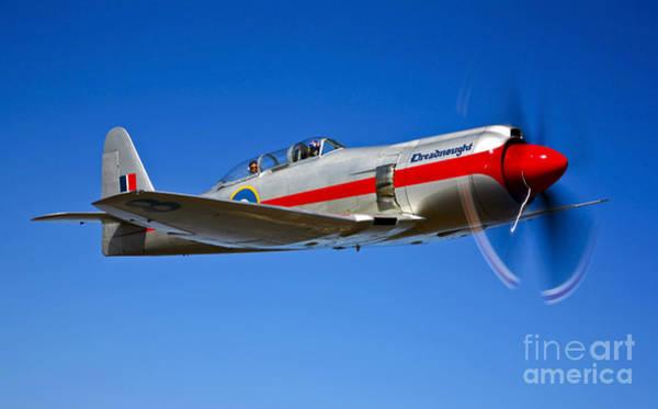 Hawker Sea Fury Photograph - A Hawker Sea Fury T.mk.20 Dreadnought by Scott Germain