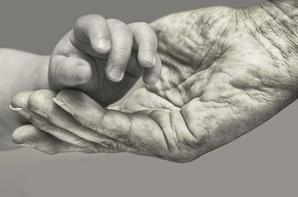 Wrinkle Wall Art - Photograph - A Helping Hand by Nigel Jones