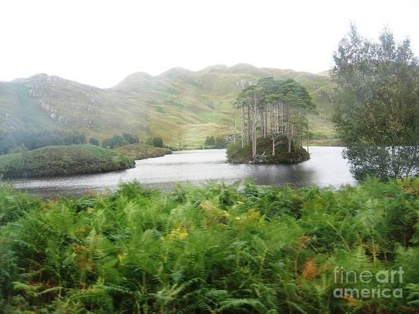 Photograph - A Highland Island by Denise Railey