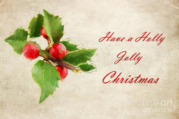 Jolly Holiday Photograph - A Holly Jolly Christmas by Darren Fisher