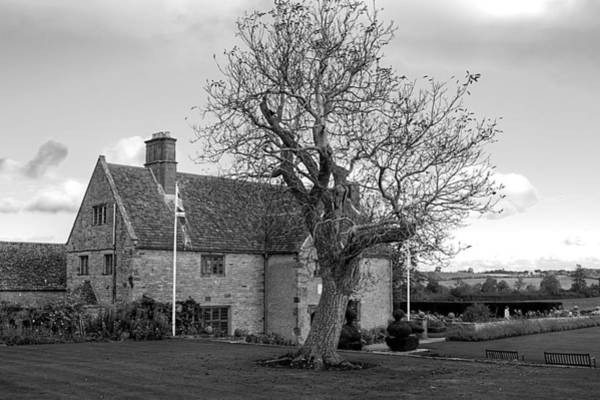 Photograph - A House And A Tree by Jeremy Hayden