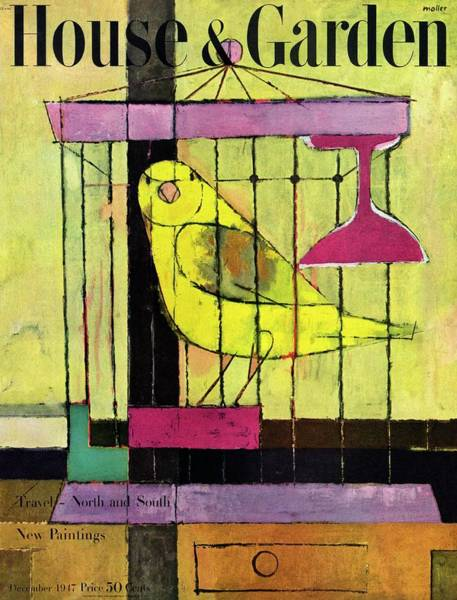 Bird House Photograph - A House And Garden Cover Of A Bird In A Cage by Hans Moller