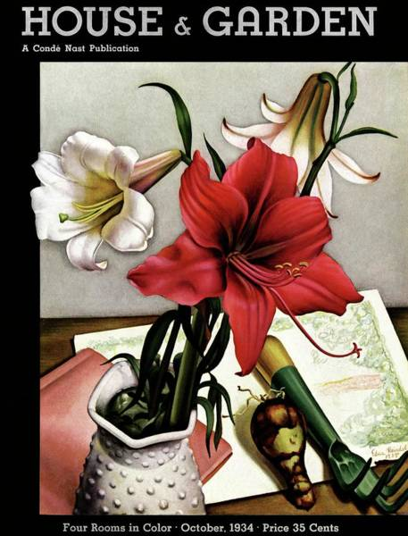 Visual Arts Photograph - A House And Garden Cover Of Lilies by Edna Reindel