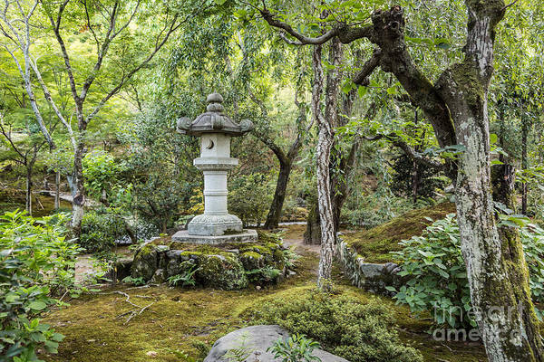 Photograph - A Japanese Garden In Kyoto by Didier Marti