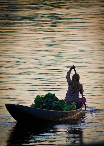 Dal Lake Photograph - A Kashmiri Woman In Near Silhouette by Steve MacAulay