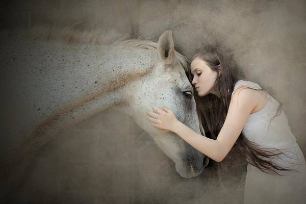 Mane Wall Art - Photograph - A Kiss by Olga Mest