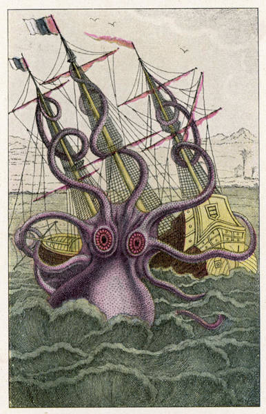 Wall Art - Drawing - A Kraken Attacks A  Sailing Vessel by Mary Evans Picture Library