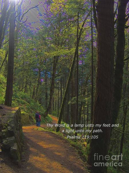 Photograph - A Light Unto My Path by Charles Robinson
