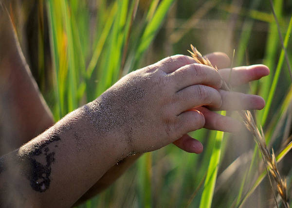Photograph - A Little Boy's Hands by Mary Lee Dereske
