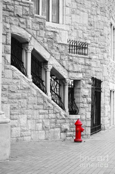 Photograph - A Little Red by Randi Grace Nilsberg