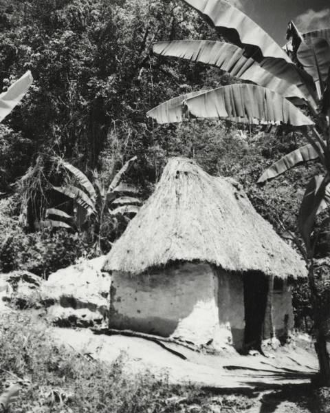 Landscape Architecture Photograph - A Local Hut In Haiti by Cecil Beaton